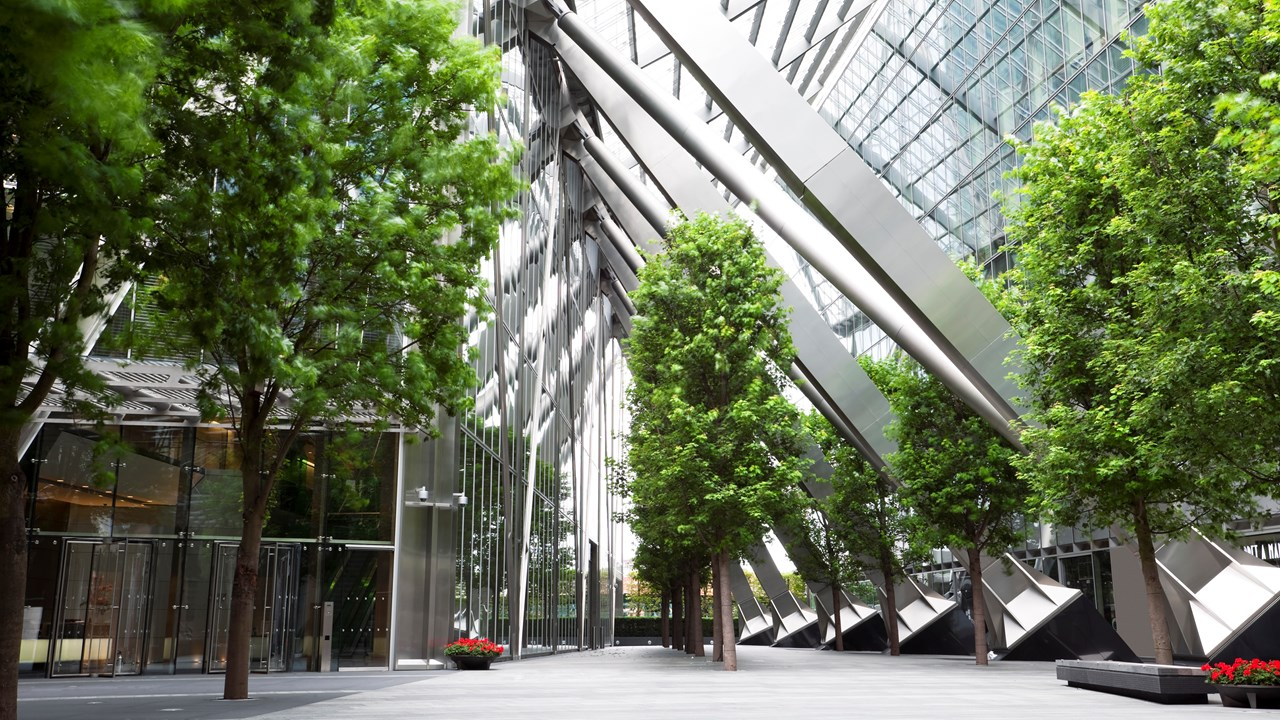 trees inside glass building