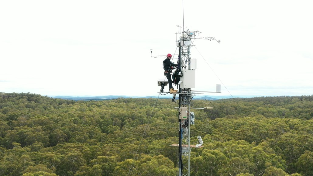 Man working on electric tower over tree tops